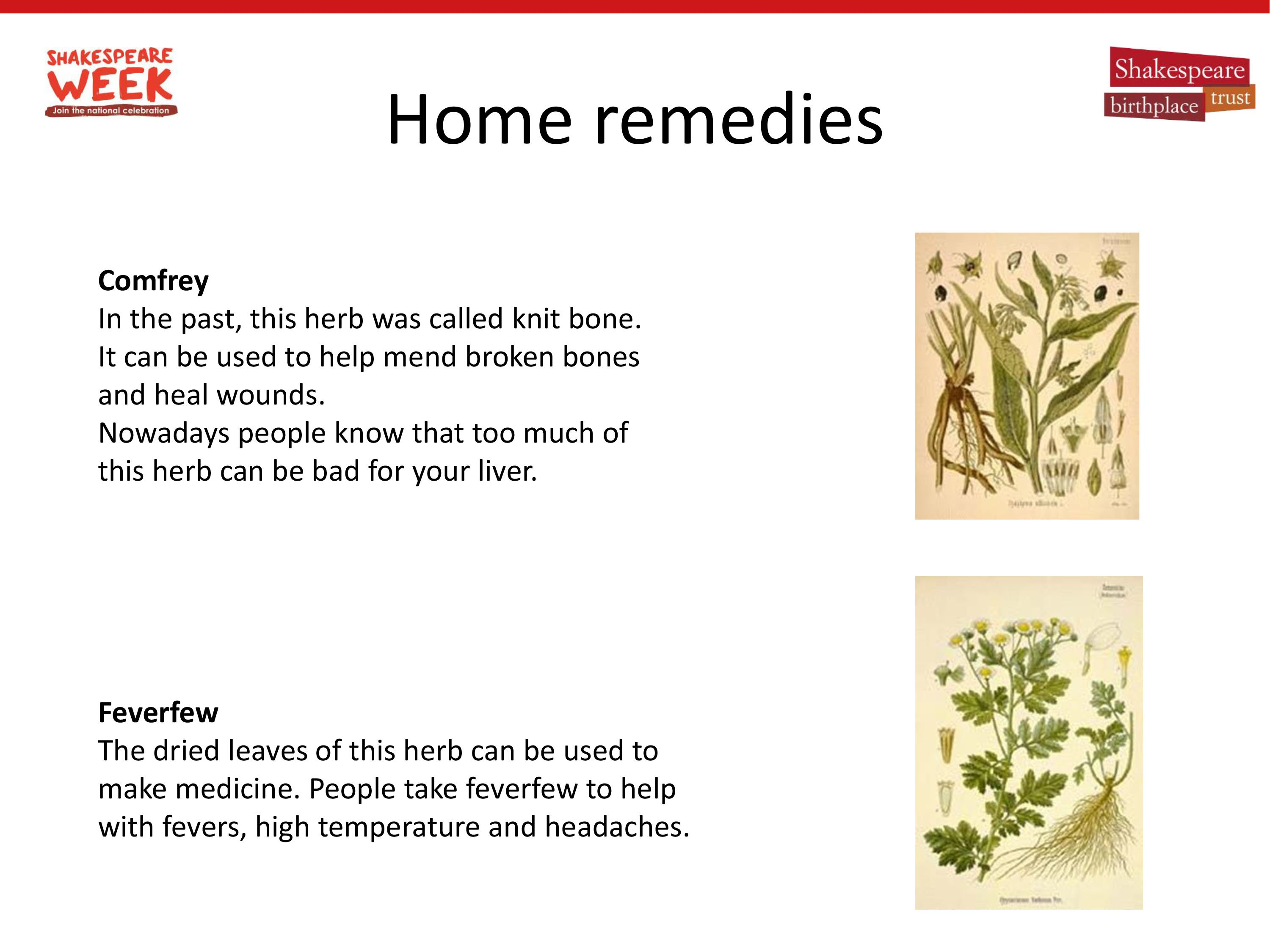 Home remedies in Shakespeare's time-4.jpg