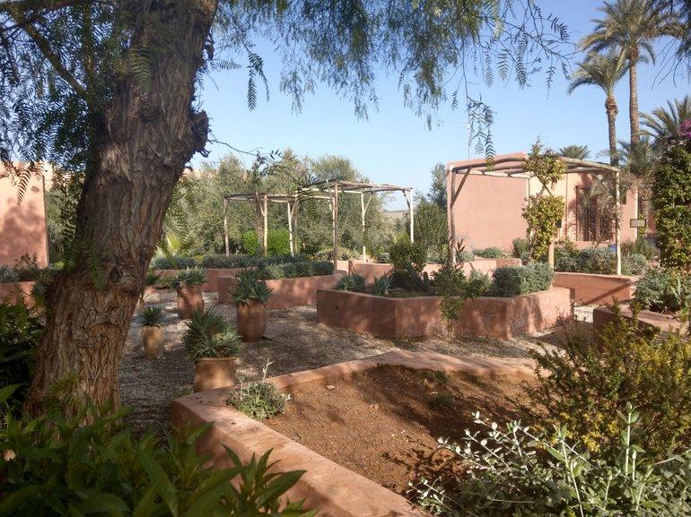 Gardens Of Morocco