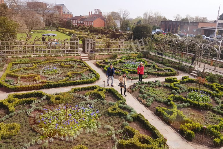 Knot garden, re-planted