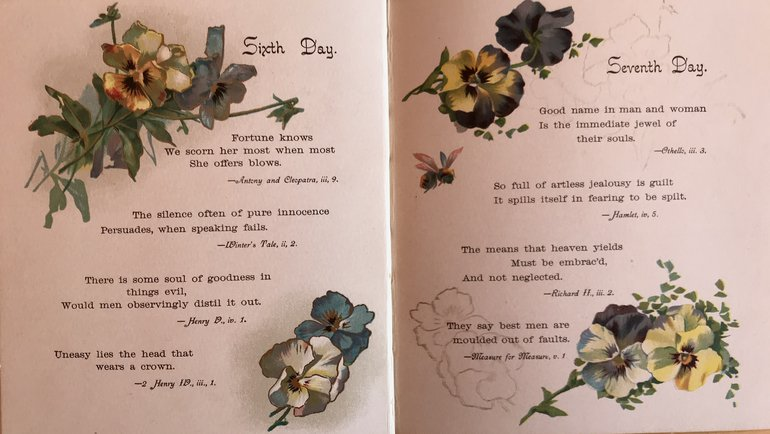 Pansies from Shakespeare Sixth and Seventh Day.jpg
