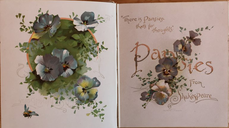 Pansies from Shakespeare title page.jpg