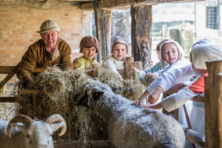 Life On A Tudor Farm