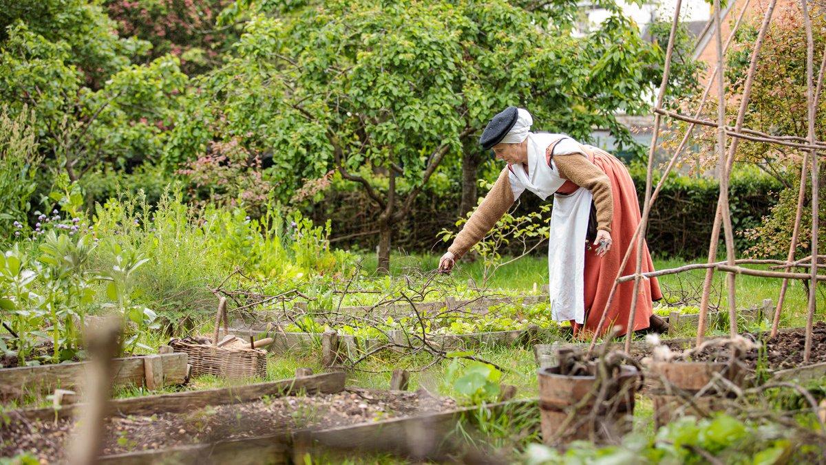 Tudor gardening