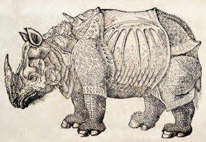 Topsell-Durer-rhinoceros-engraving-300x207.jpg