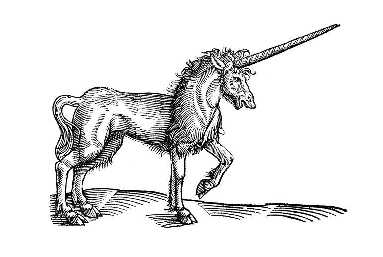 Topsell unicorn