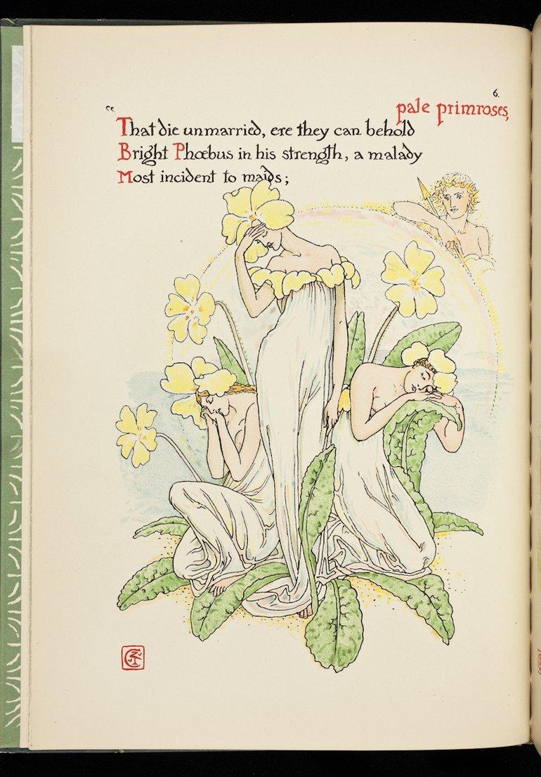 sbt-56-cra-83199179-flowers-from-shakespeare-s-garden-crane-1909-plate-6-primroses (1).jpg