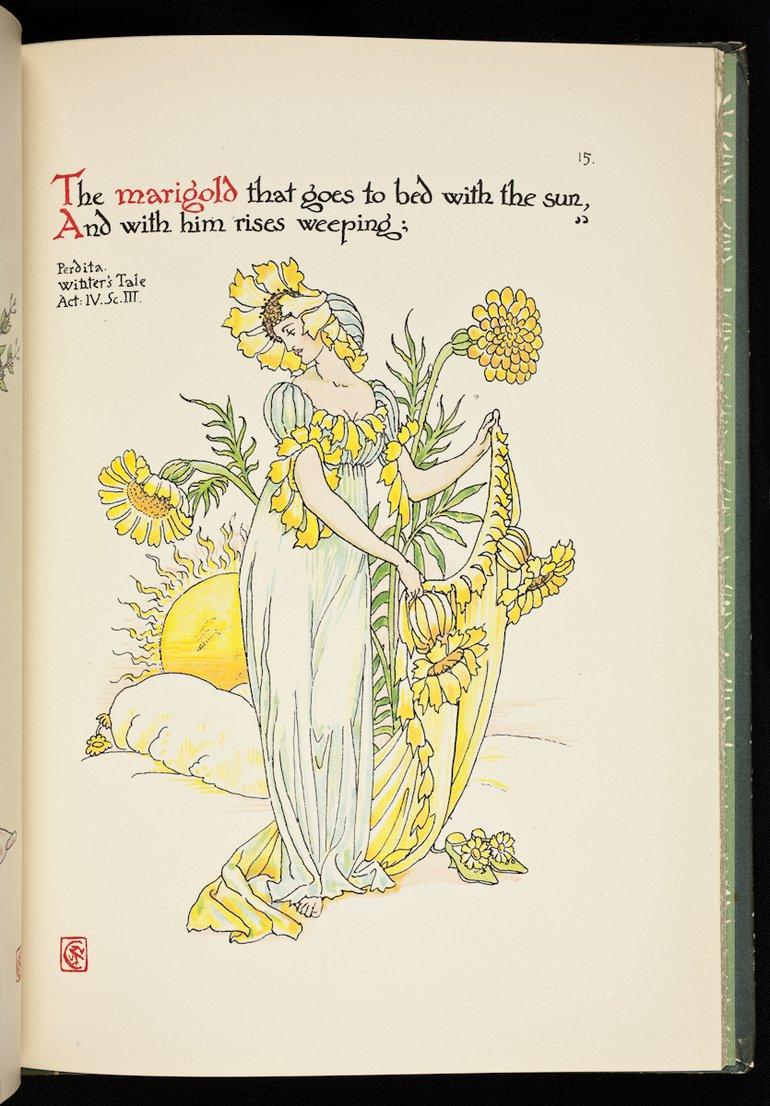 sbt-56-cra-83199179-flowers-from-shakespeare-s-garden-crane-1909-plate-15-marigold.jpg