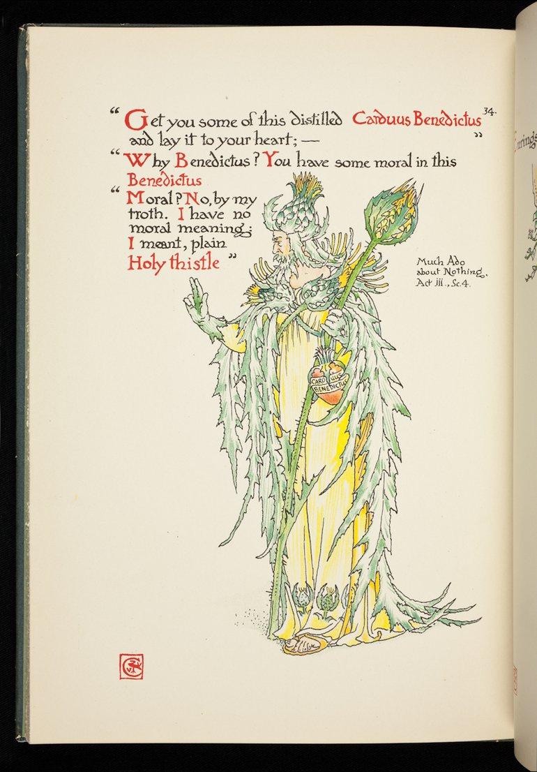 sbt-56-cra-83199179-flowers-from-shakespeare-s-garden-crane-1909-plate-34-holy-thistle.jpg