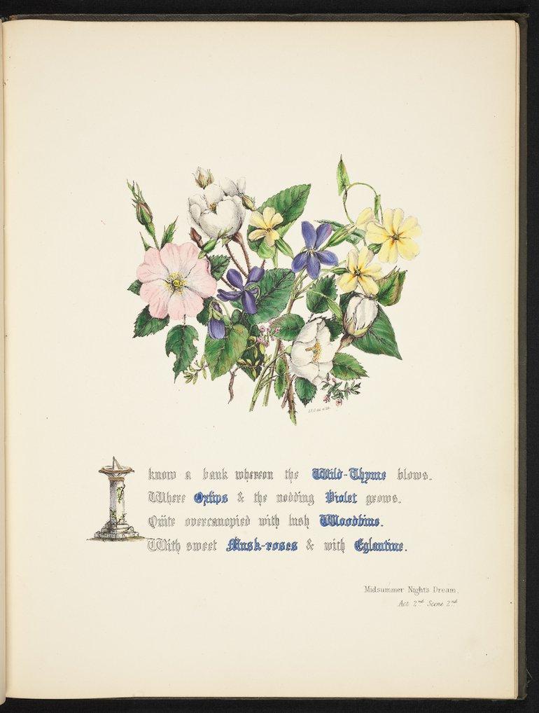 sbt-os-56-83039953-flowers-of-shakespeare-1845-plate-10.jpg