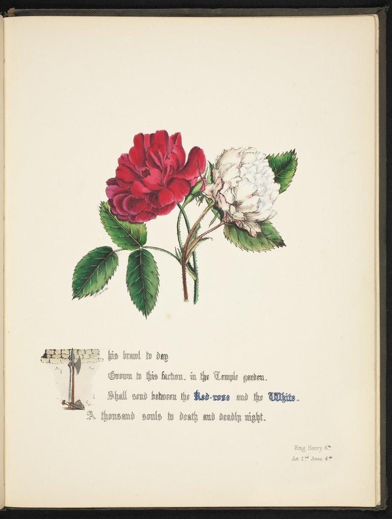 sbt-os-56-83039953-flowers-of-shakespeare-1845-plate-28.jpg