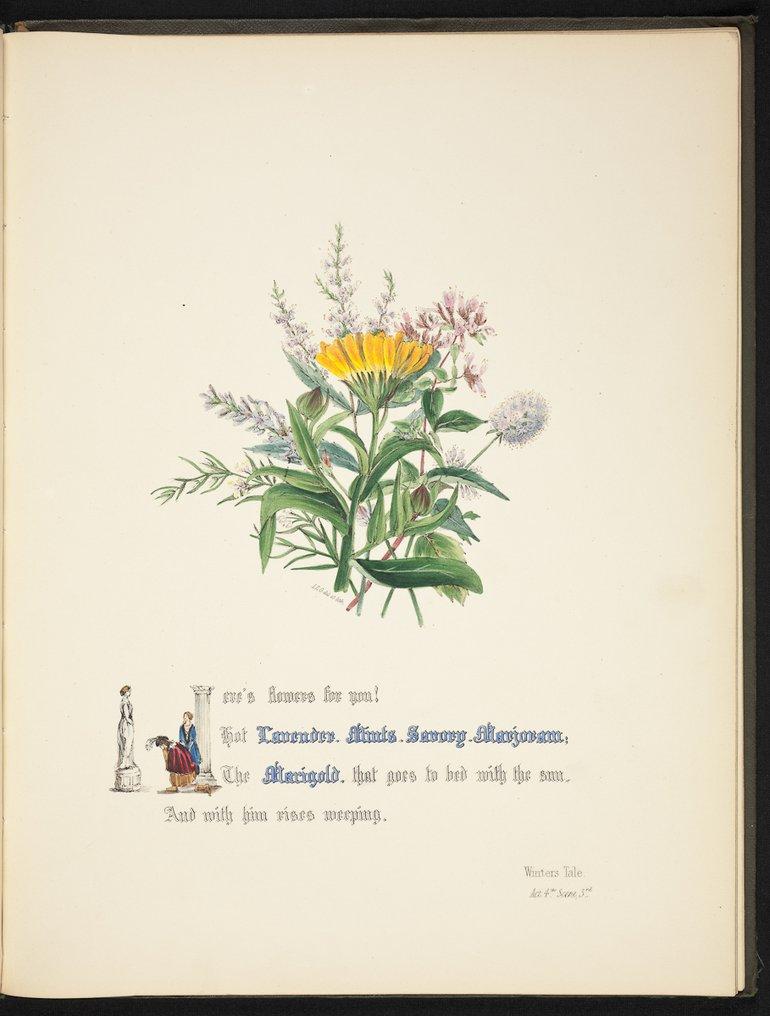 sbt-os-56-83039953-flowers-of-shakespeare-1845-plate-15.jpg
