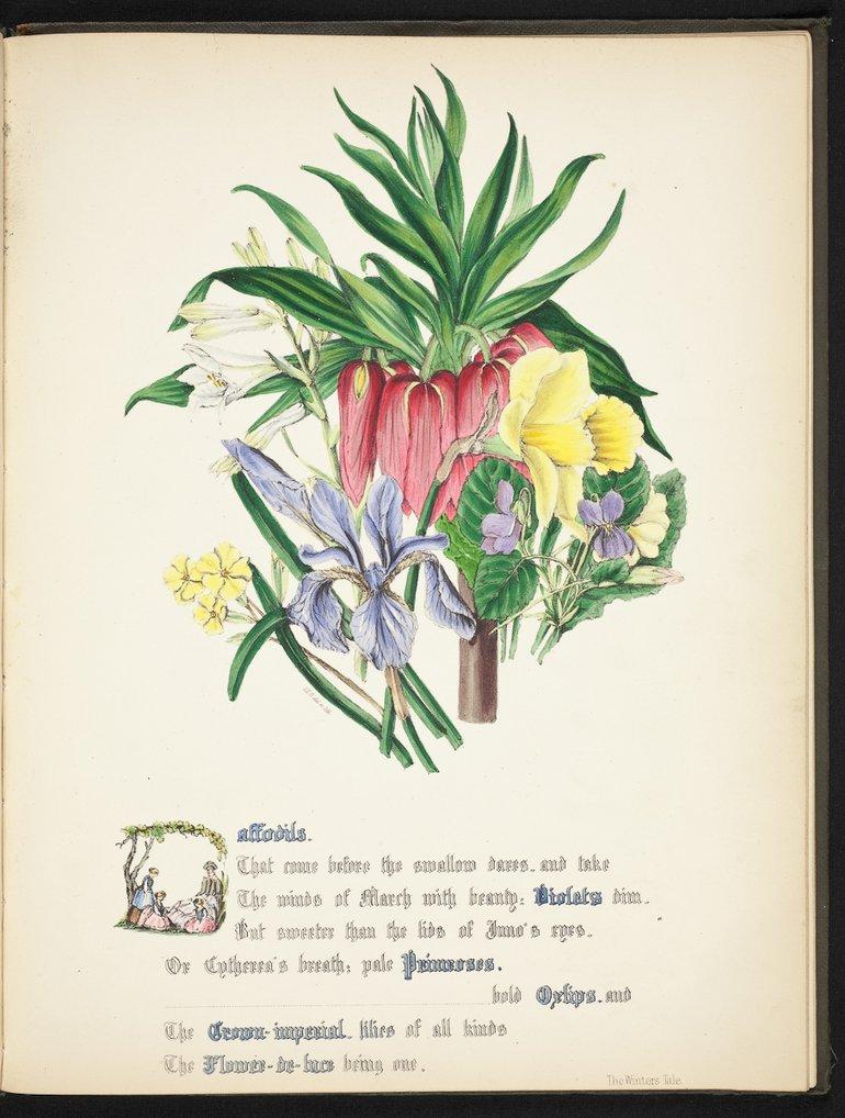sbt-os-56-83039953-flowers-of-shakespeare-1845-plate-16.jpg
