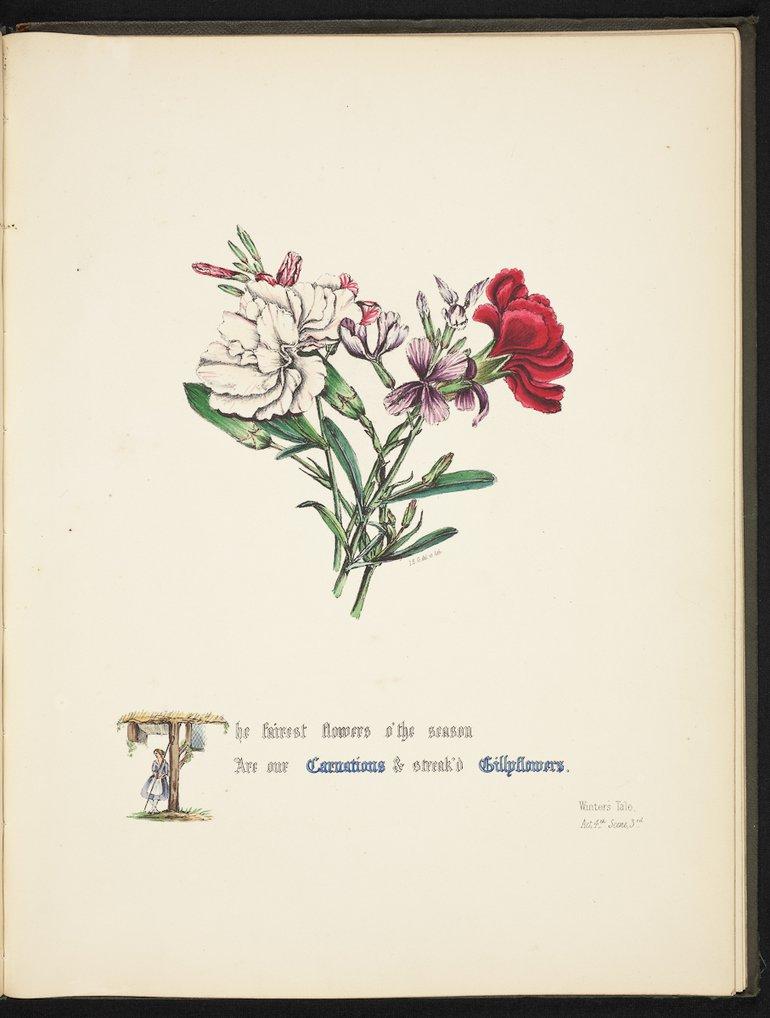 sbt-os-56-83039953-flowers-of-shakespeare-1845-plate-17.jpg