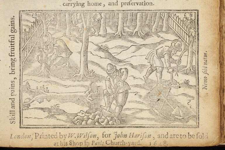 Working man in the orchard, illustration from William Lawson`s book (1617)