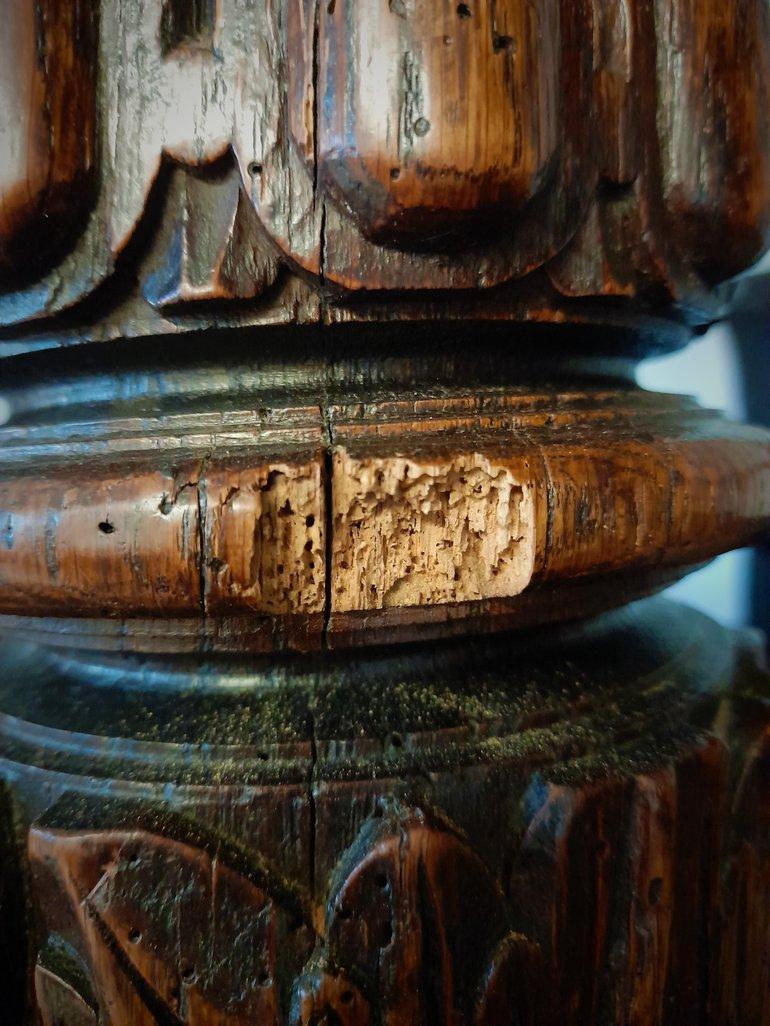 woodworm damage.jpg